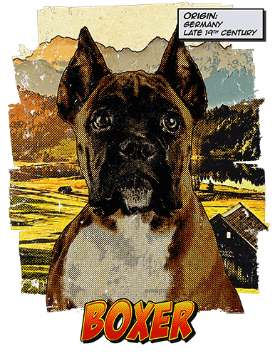 Boxer T-Shirt Ancestry Cropped