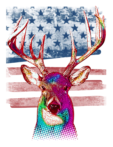 Buck T Shirt American Flag