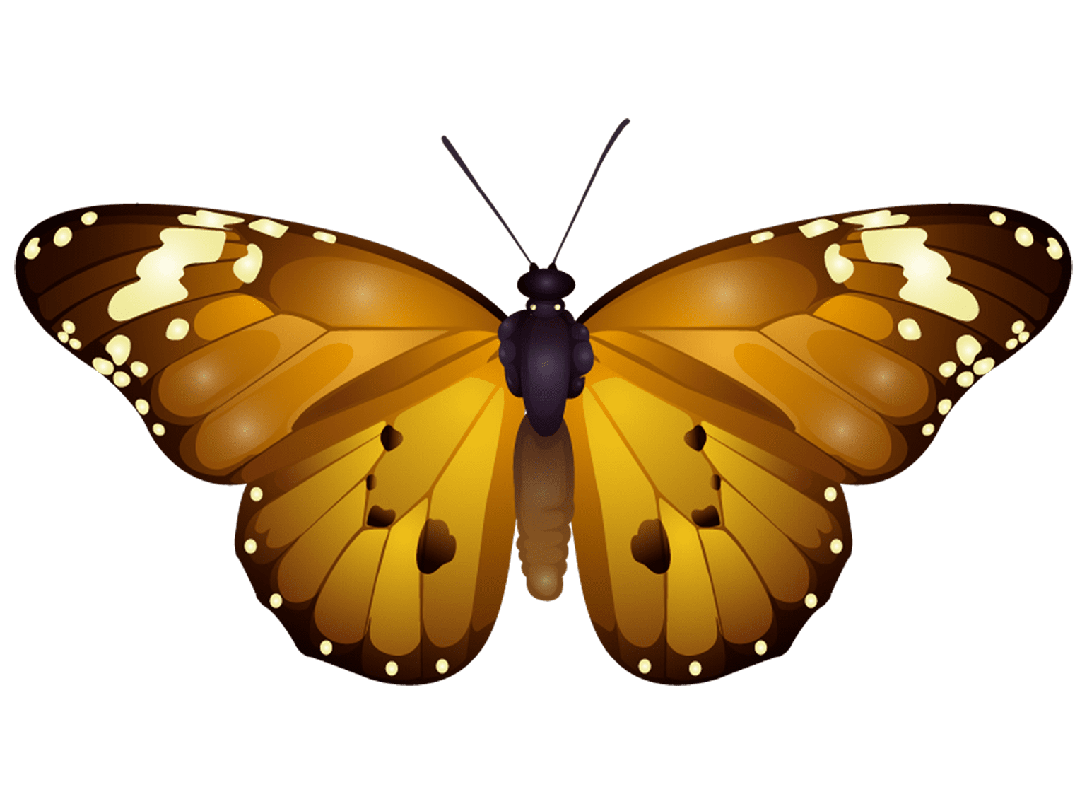 Butterfly T-Shirt - Vibrant Vector