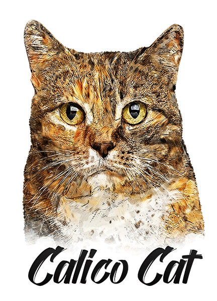Calico Cat T-Shirt - Vivid Colors