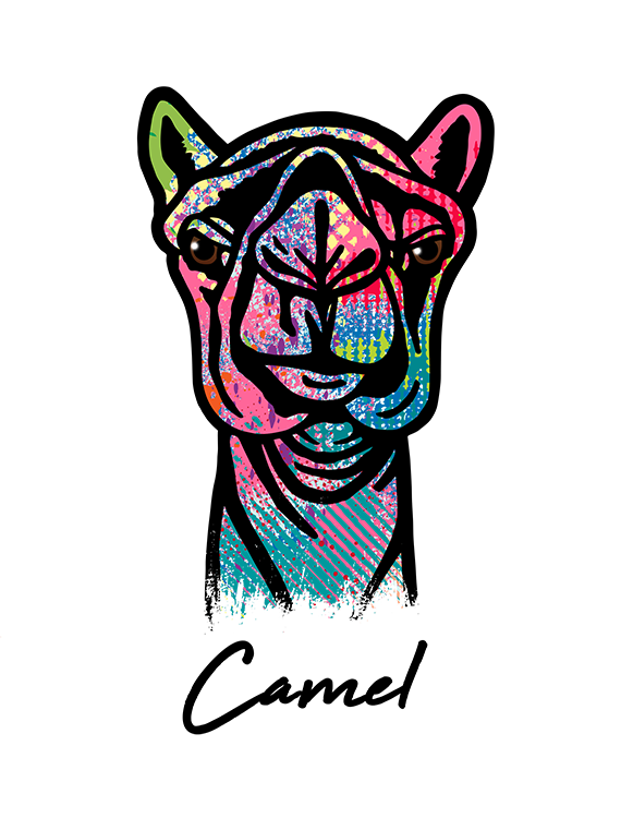 Camel T Shirt Colorful Abstract