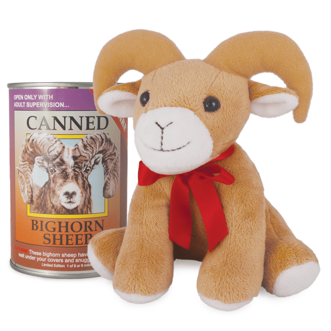 Canned Critter's Big Horn Sheep 6