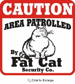 Cat Caution Sign