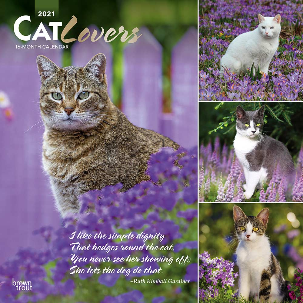 2021 Cat Lovers Calendar