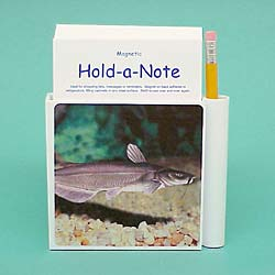 Catfish Hold-a-Note