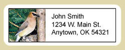 Cedar Waxwing Address Labels