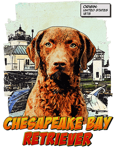 Chesapeake Bay Retriever T-Shirt Ancestry