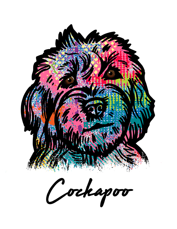 Cockapoo T Shirt Colorful Abstract
