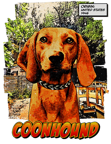 Coonhound T-Shirt Ancestry