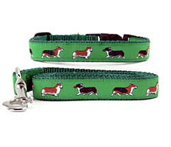 Corgi Collar & Leash