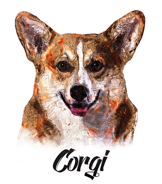 Corgi T-Shirt - Vivid Colors
