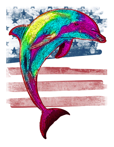 Dolphin T Shirt American Flag