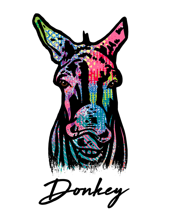 Donkey T Shirt Colorful Abstract