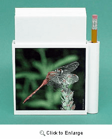 Dragonfly Hold-a-Note
