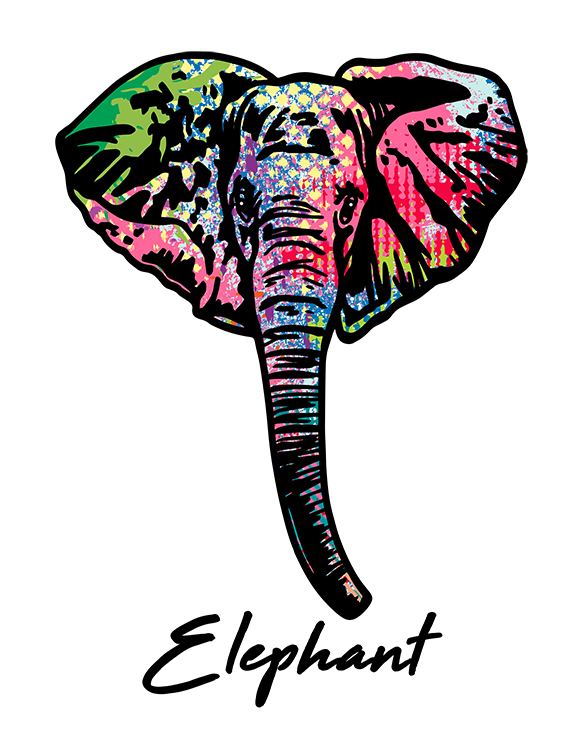 Elephant T Shirt Colorful Abstract