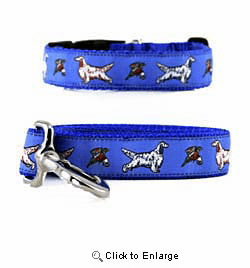 English Setter Collar & Leash