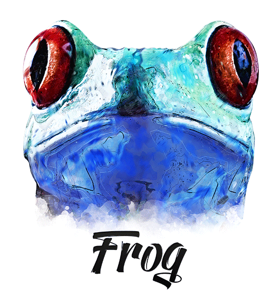 Frog T-Shirt - Vivid Colors
