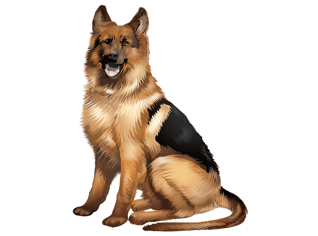 German Shepherd T-Shirt - Vibrant Vector