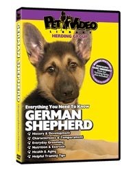 German Shepherd Video