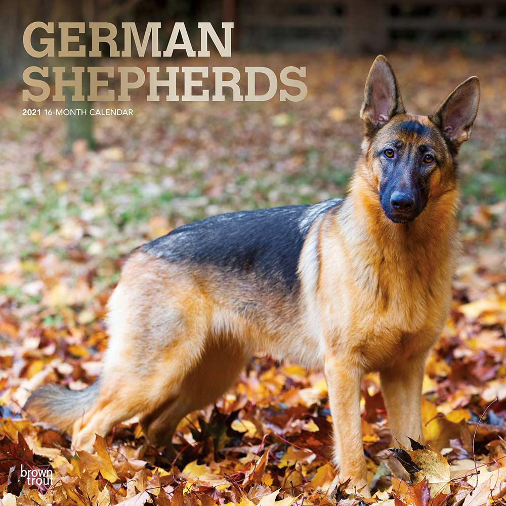 2021 German Shepherds Calendar
