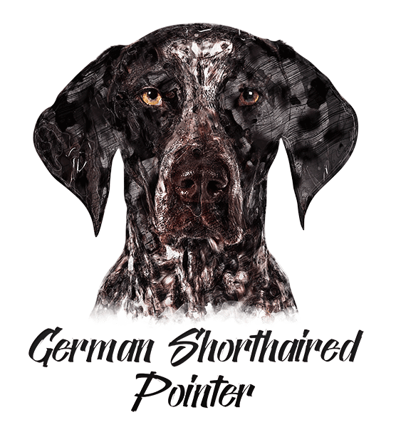 German Shorthaired Pointer T-Shirt - Vivid Colors
