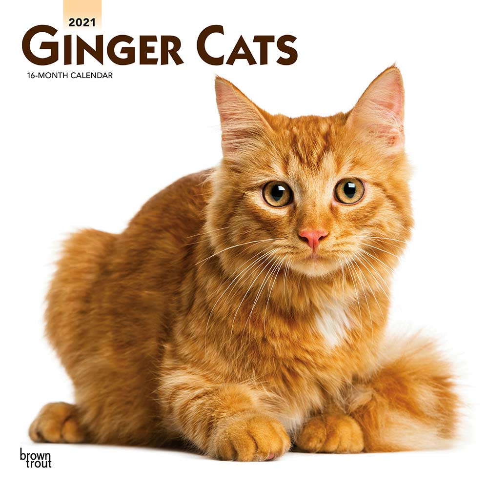 2021 Ginger Cats Calendar