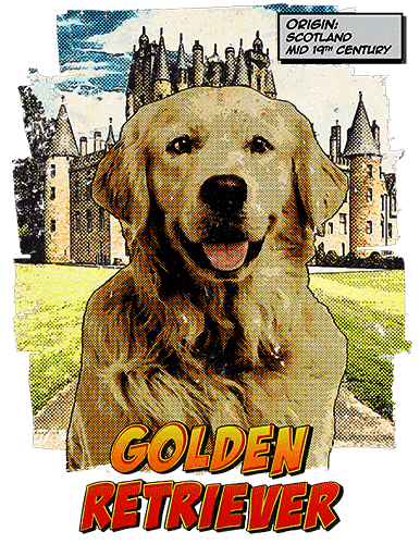 Golden Retriever T-Shirt Ancestry