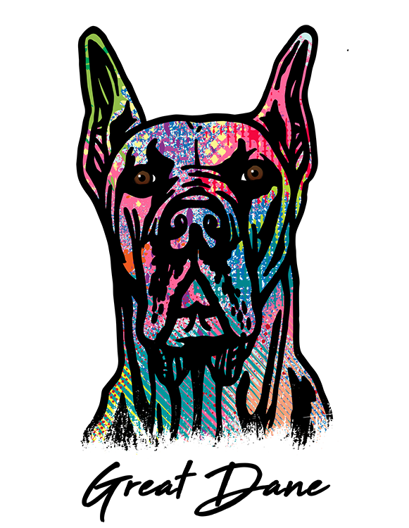 Great Dane Cropped T Shirt Colorful Abstract