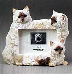 Himalayan Cat Picture Frame