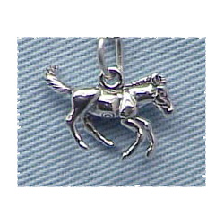 Horse Charm Galloping