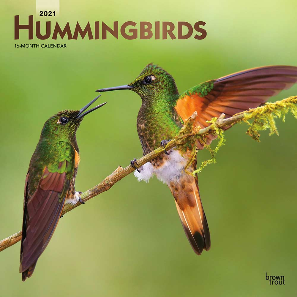 2021 Hummingbirds Calendar