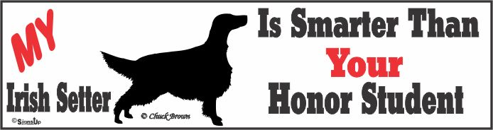Irish Setter Bumper Sticker Honor Student