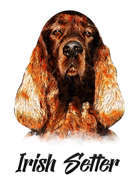 Irish Setter T-Shirt - Vivid Colors