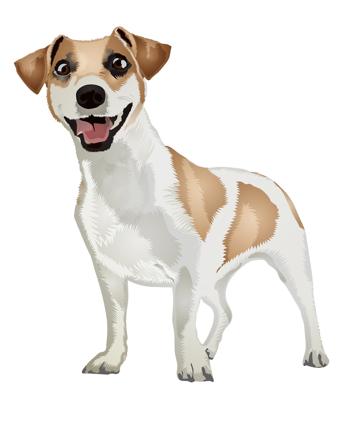 Jack Russell T-Shirt - Vibrant Vector