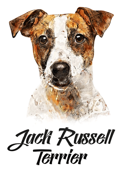 Jack Russell T-Shirt - Vivid Colors