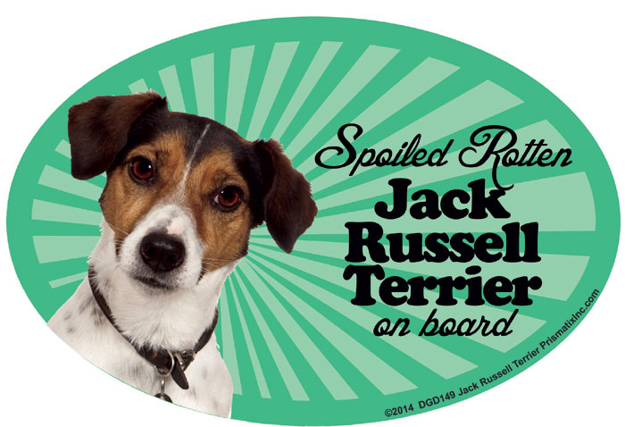 Jack Russell Terrier Car Magnet - Spoiled Rotten