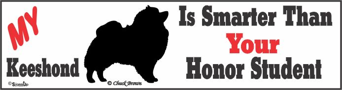 Keeshond Bumper Sticker Honor Student