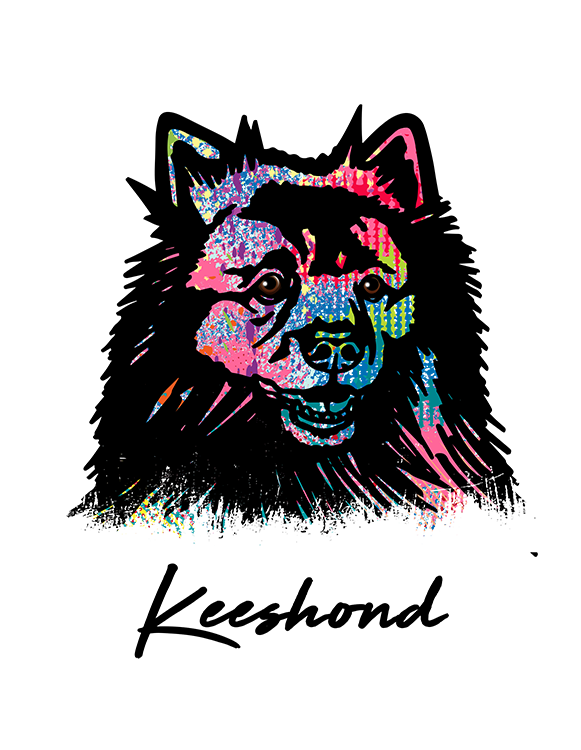 Keeshond T Shirt Colorful Abstract