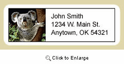Koala Address Labels