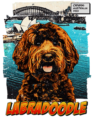 Labradoodle T-Shirt Ancestry Chocolate
