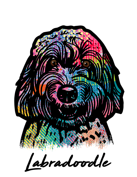 Labradoodle T Shirt Colorful Abstract