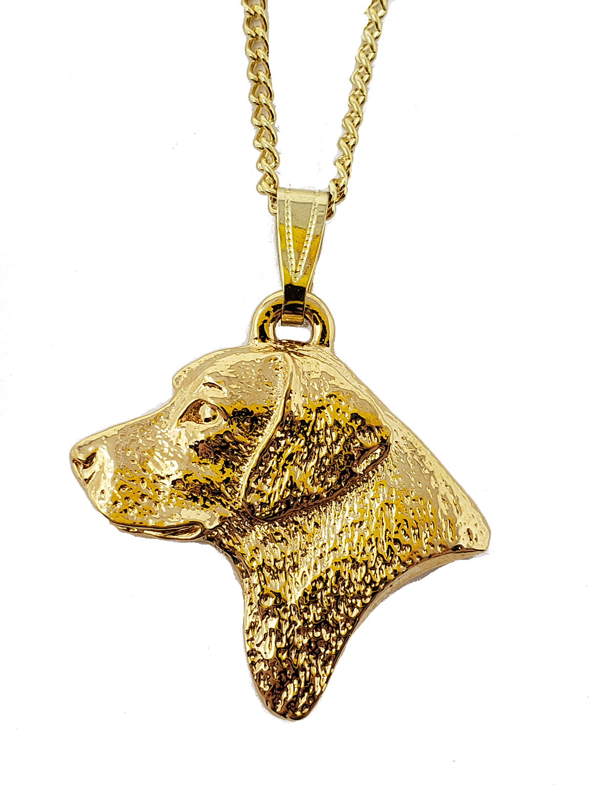Labrador Retriever 24K Gold Plated Pendant with Necklace Head
