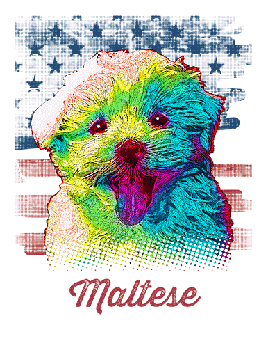 Maltese T Shirt American Flag