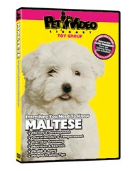 Maltese Video