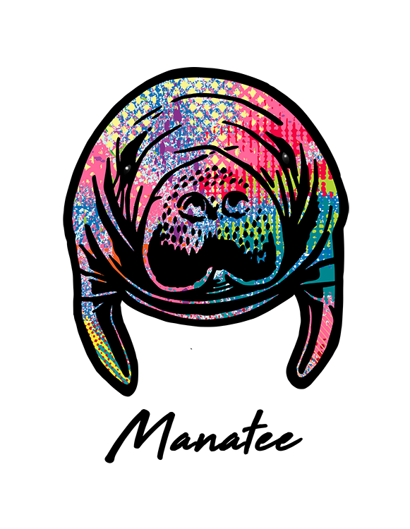 Manatee T Shirt Colorful Abstract