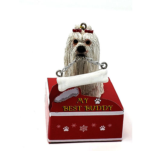My Best Buddy Maltese Christmas Ornament