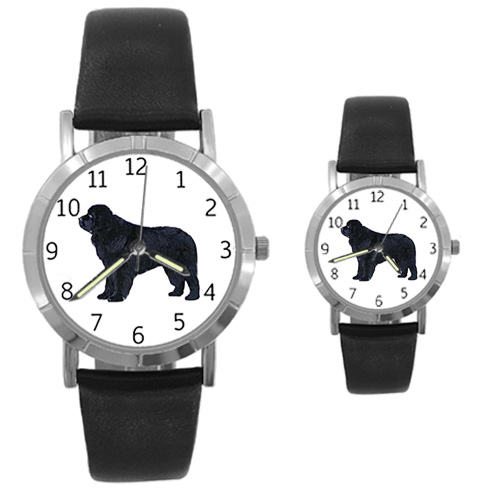 Newfoundland Watch