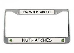 Nuthatch License Plate Frame
