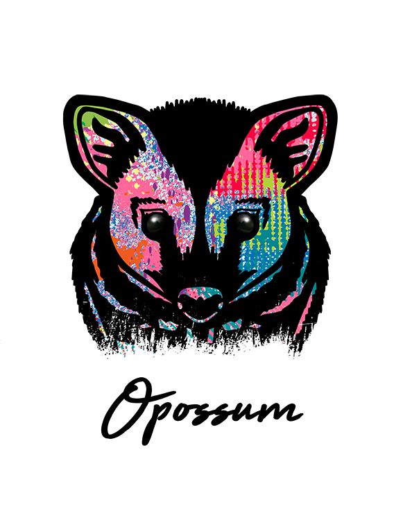 Opossum T Shirt Colorful Abstract