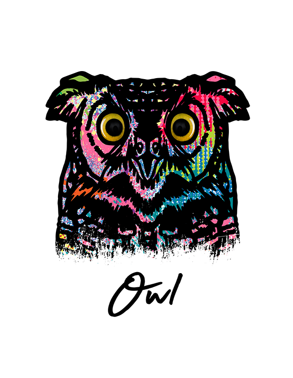 Owl T Shirt Colorful Abstract
